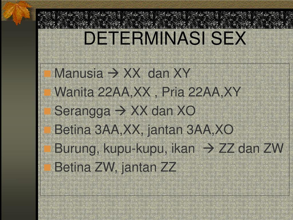 DETERMINASI SEX