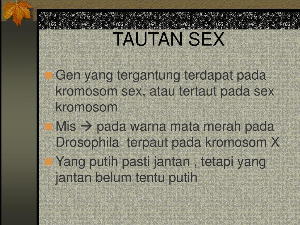 TAUTAN SEX