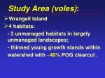 study area voles
