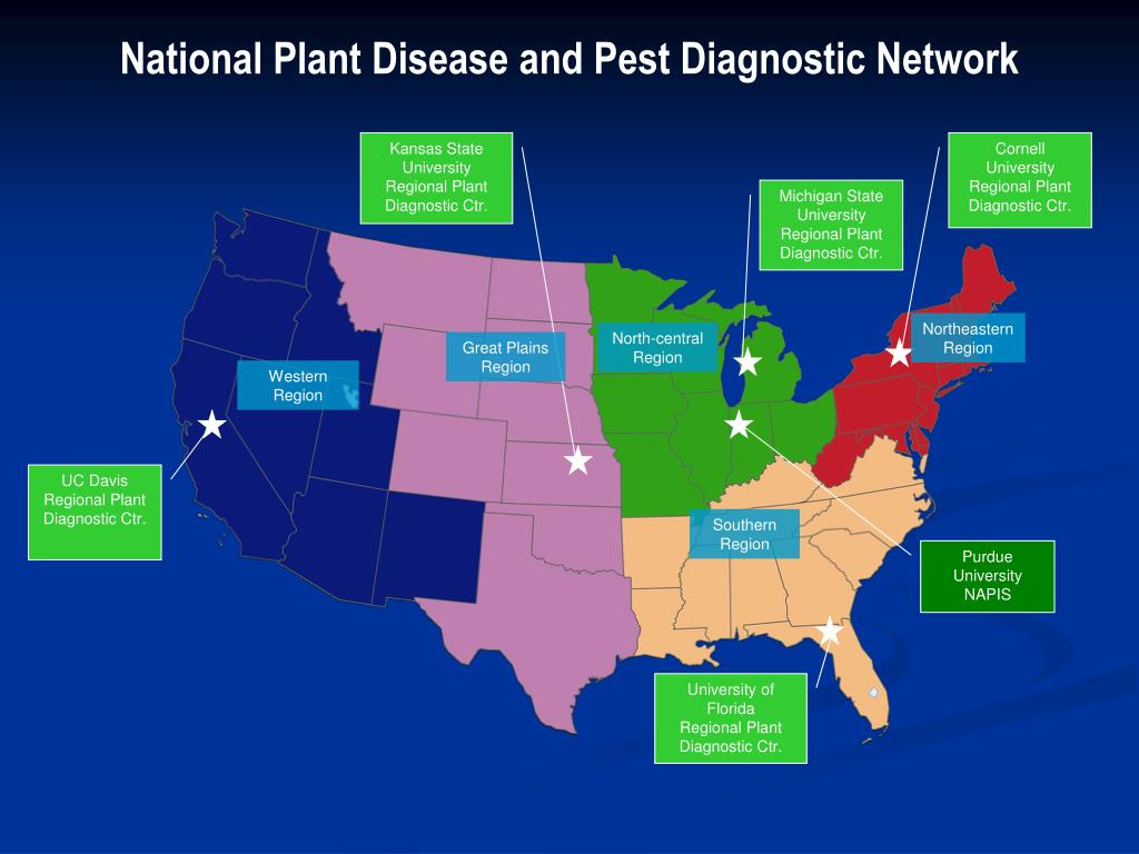 National Plant Disease and Pest Diagnostic Network