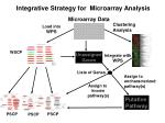 integrative strategy for microarray analysis