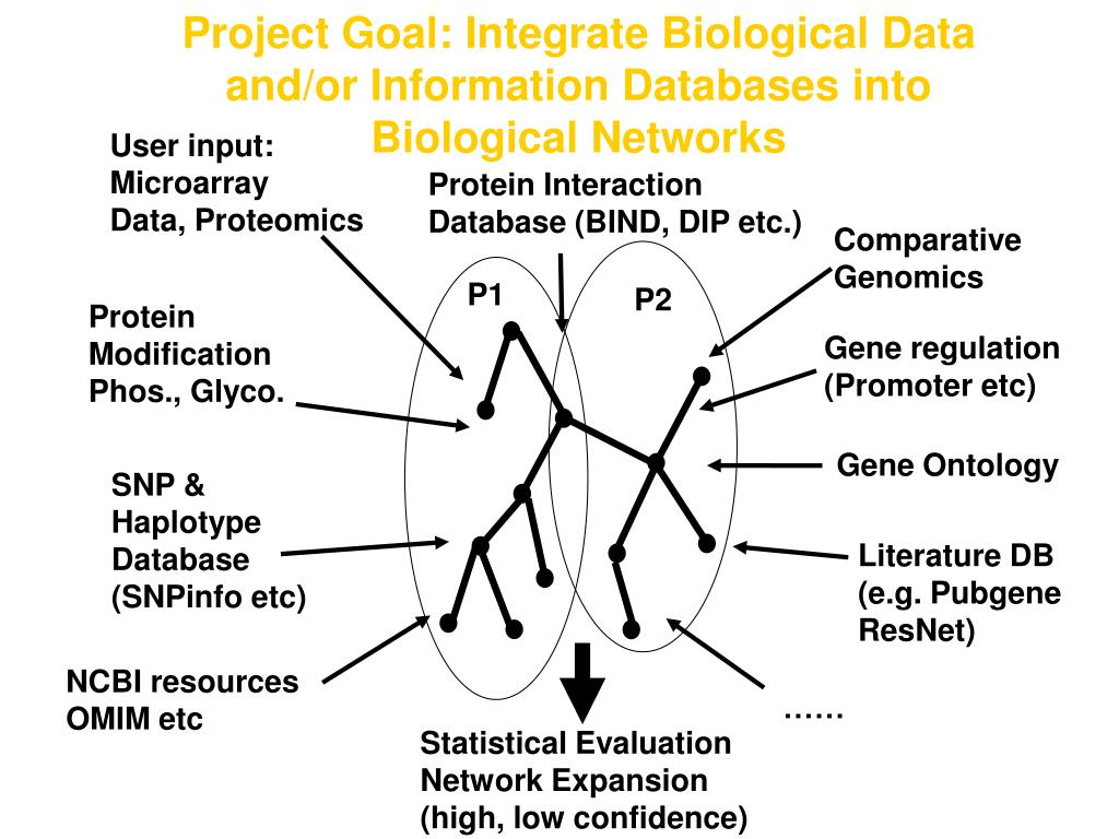 Project Goal: Integrate Biological Data and/or Information Databases into Biological Networks
