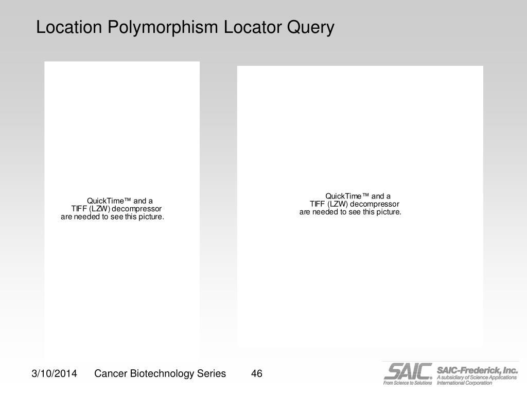 Location Polymorphism Locator Query