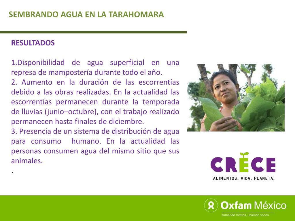 SEMBRANDO AGUA EN LA TARAHOMARA