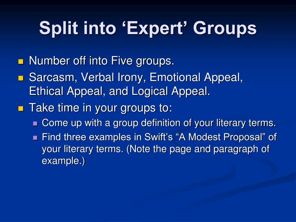 Split into 'Expert' Groups