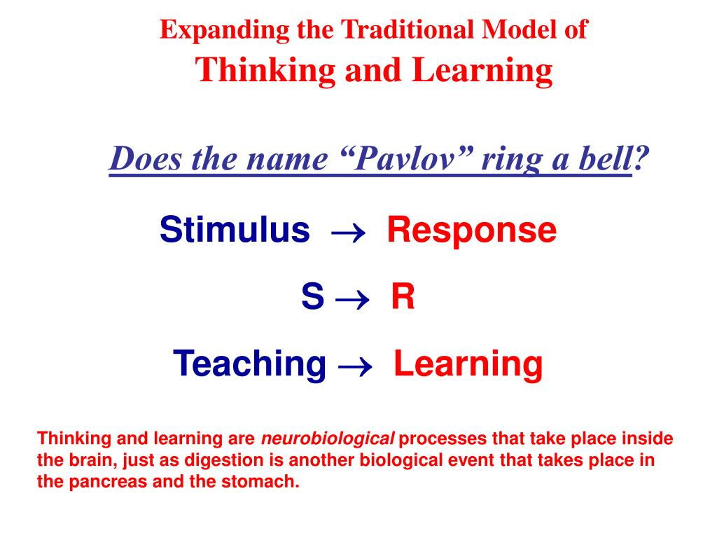 Expanding the Traditional Model of