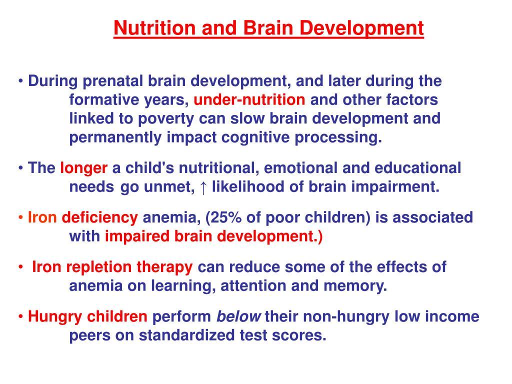 Nutrition and Brain Development