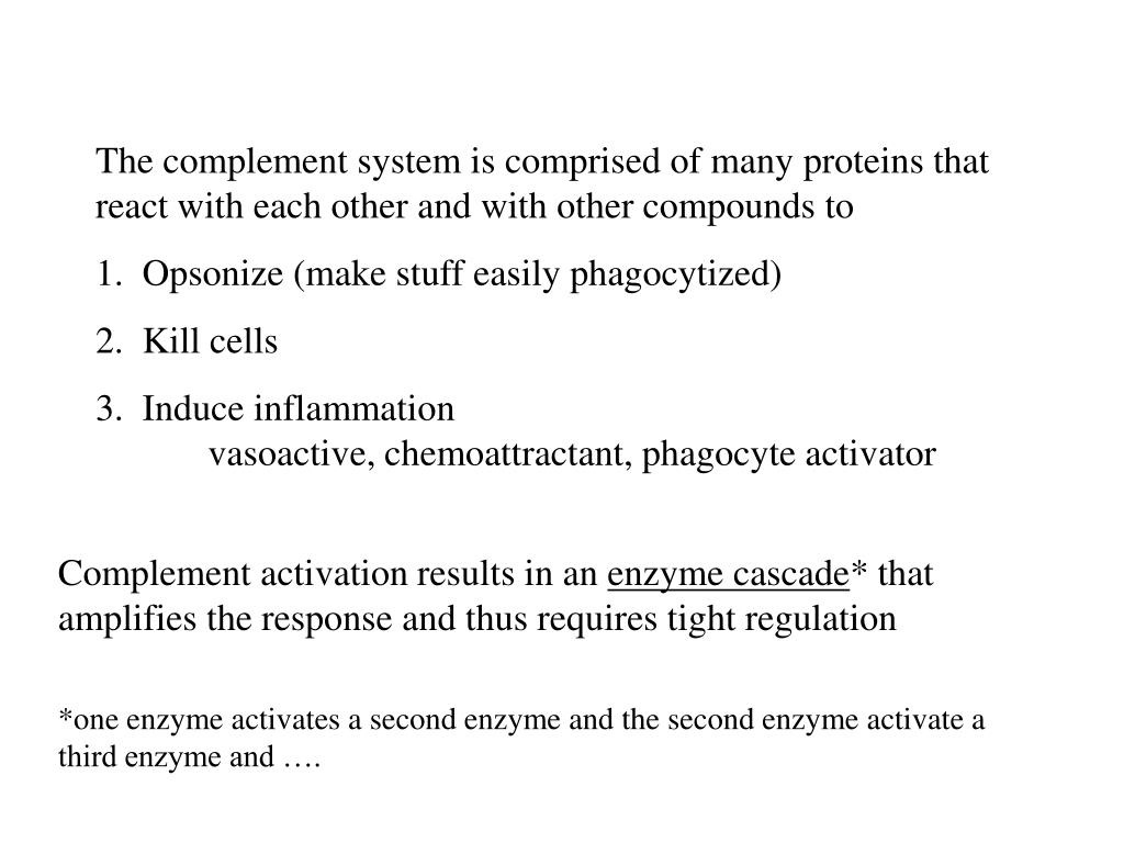 The complement system is comprised of many proteins that react with each other and with other compounds to