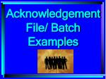 acknowledgement file batch examples