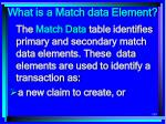 what is a match data element