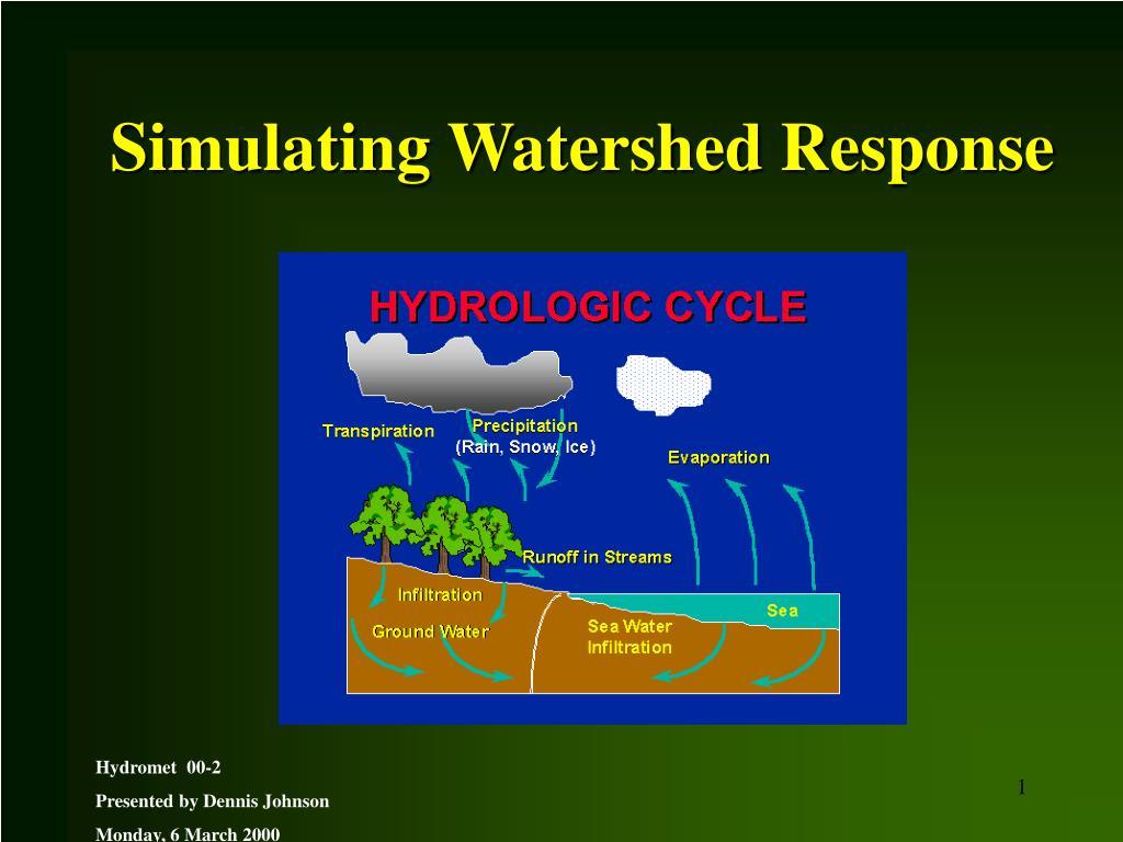 Simulating Watershed Response