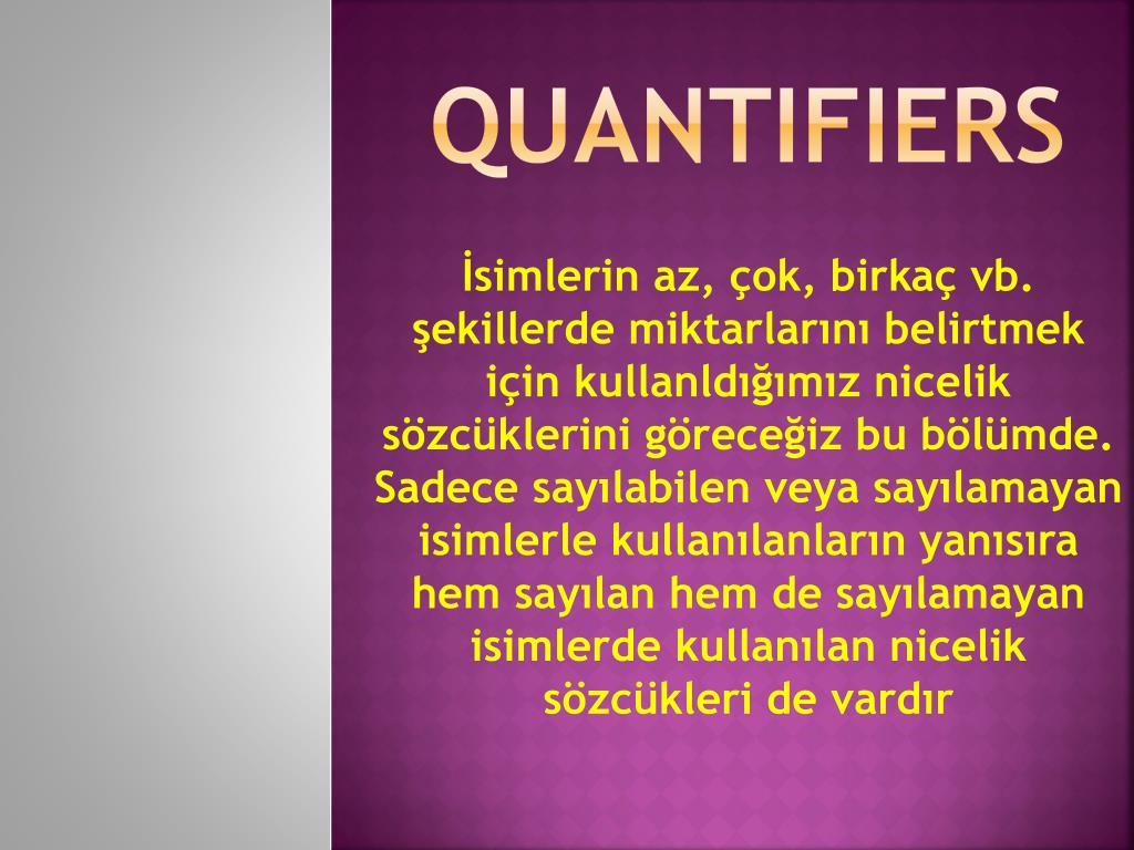 quantifiers l.