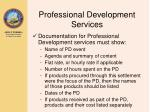 professional development services