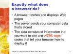 exactly what does a browser do