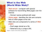what is the web world wide web