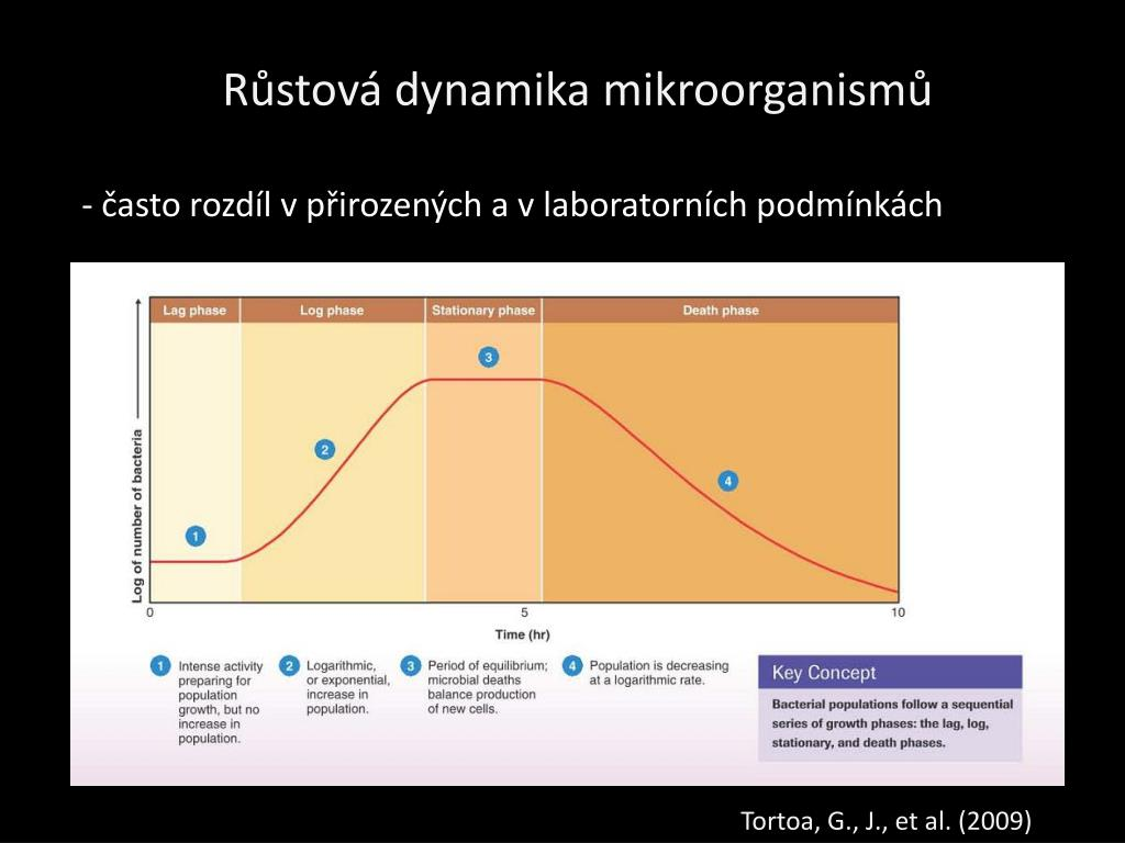 Růstová dynamika mikroorganismů