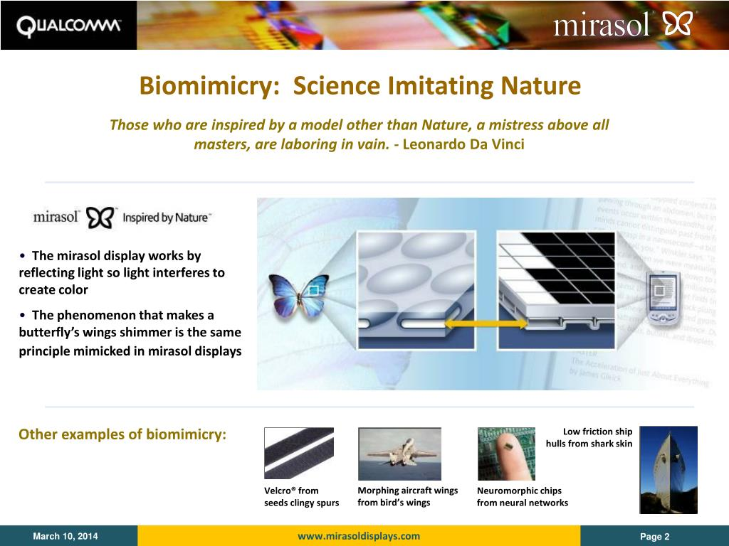 Biomimicry:  Science Imitating Nature