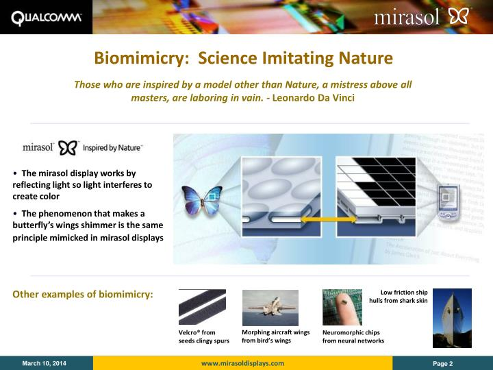 Biomimicry science imitating nature