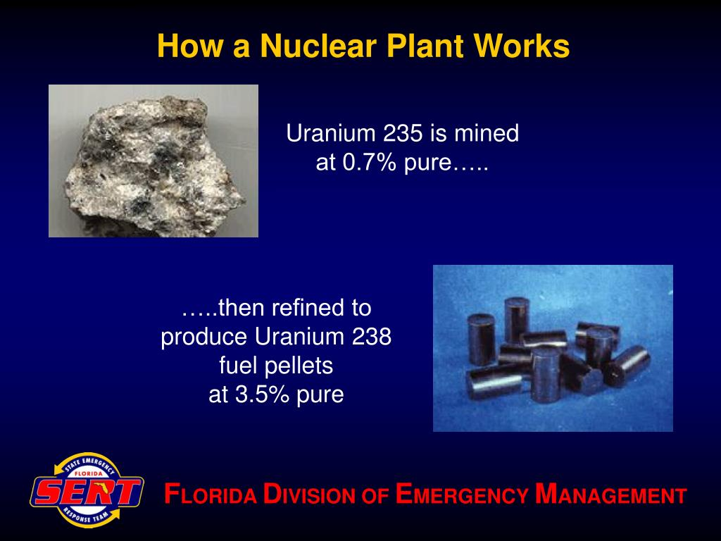 How a Nuclear Plant Works