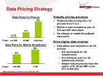 data pricing strategy