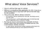 what about voice services