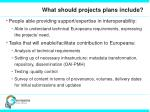 what should projects plans include