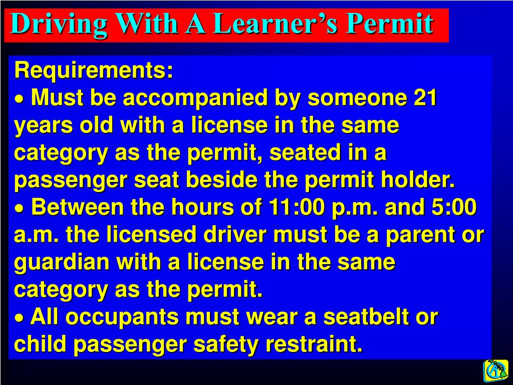 Driving With A Learner's Permit
