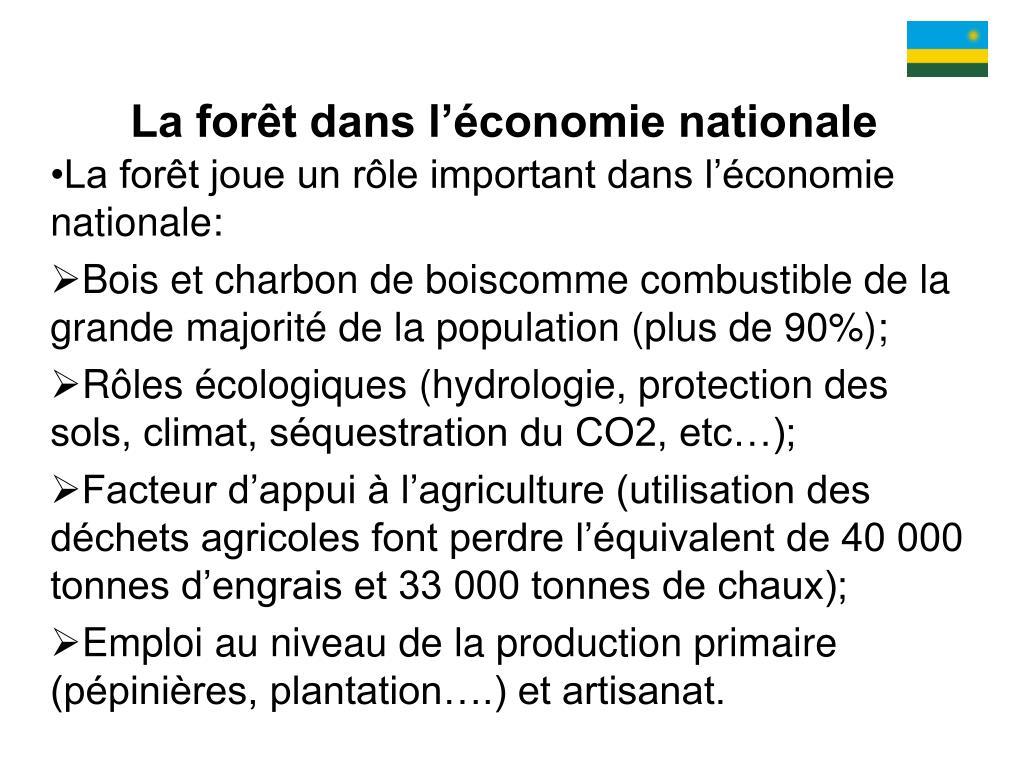 La forêt dans l'économie nationale