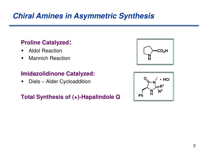 Chiral Amines in Asymmetric Synthesis
