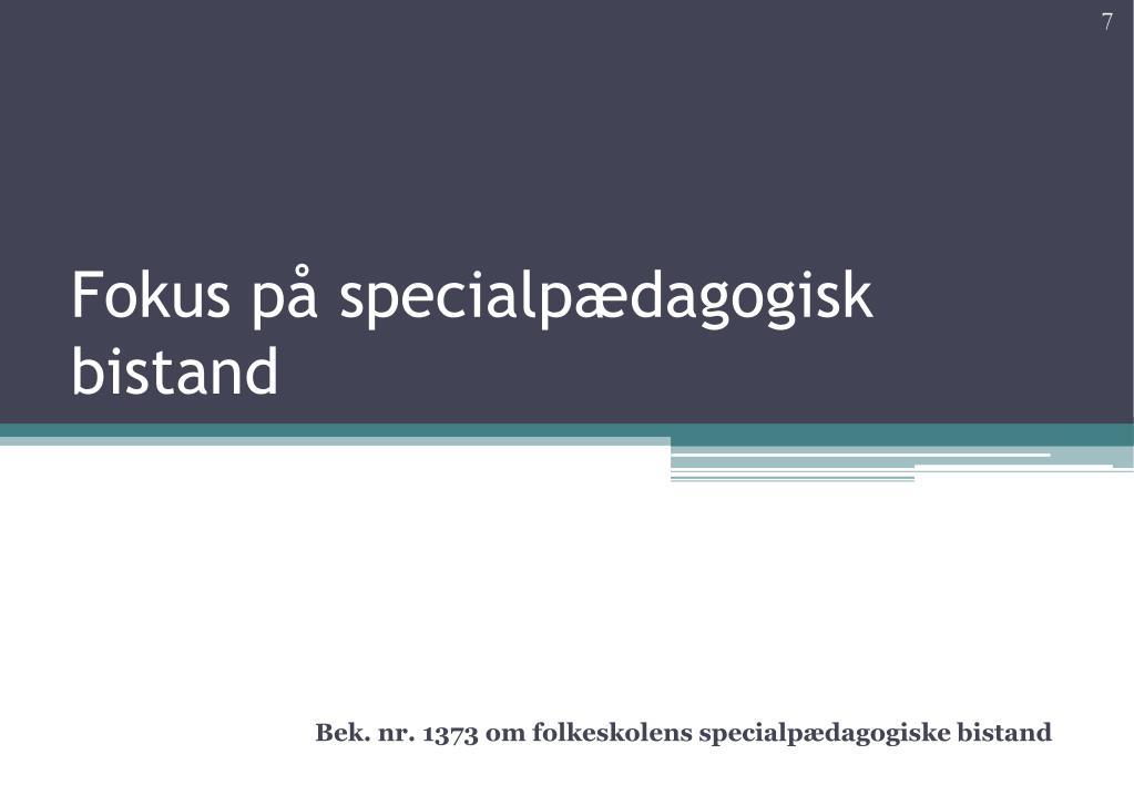 Fokus på specialpædagogisk bistand