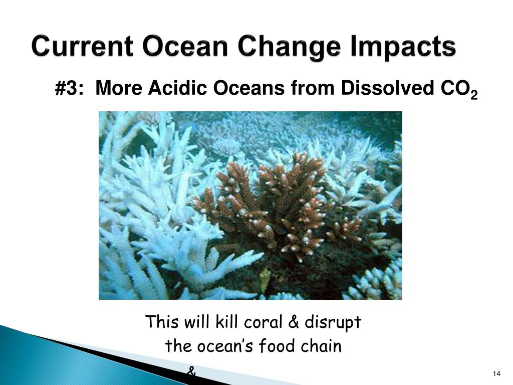 Current Ocean Change Impacts