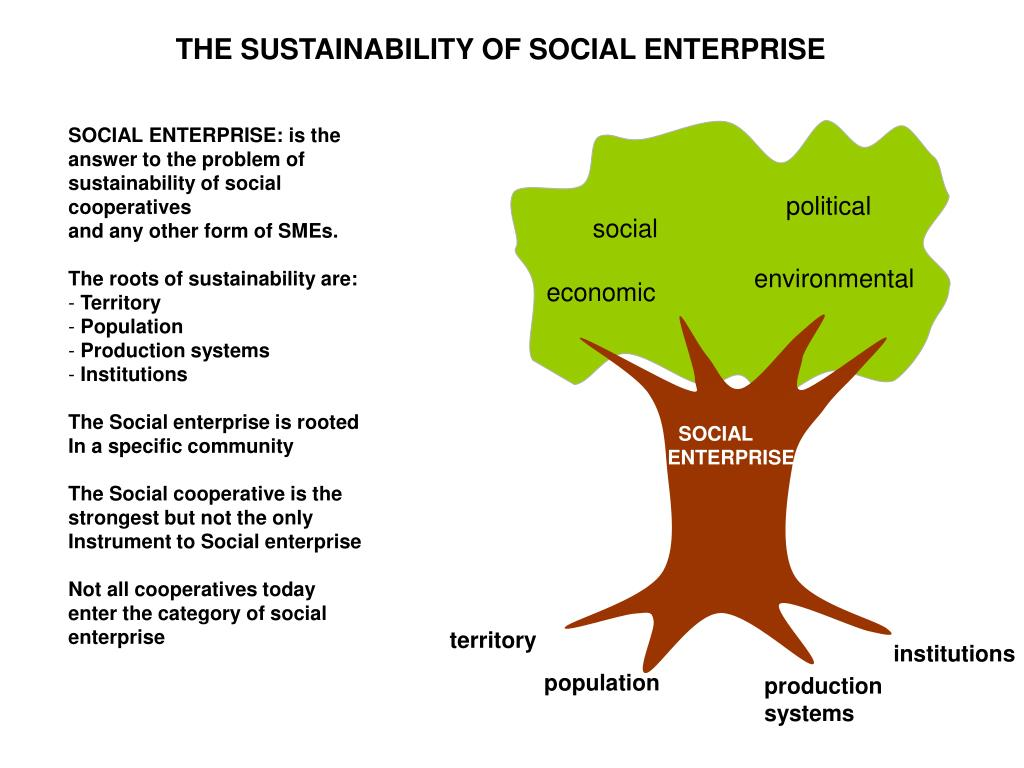 THE SUSTAINABILITY OF SOCIAL ENTERPRISE