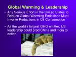 global warming leadership