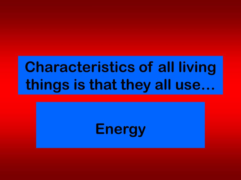 characteristics of all living things is that they all use l.