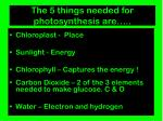the 5 things needed for photosynthesis are