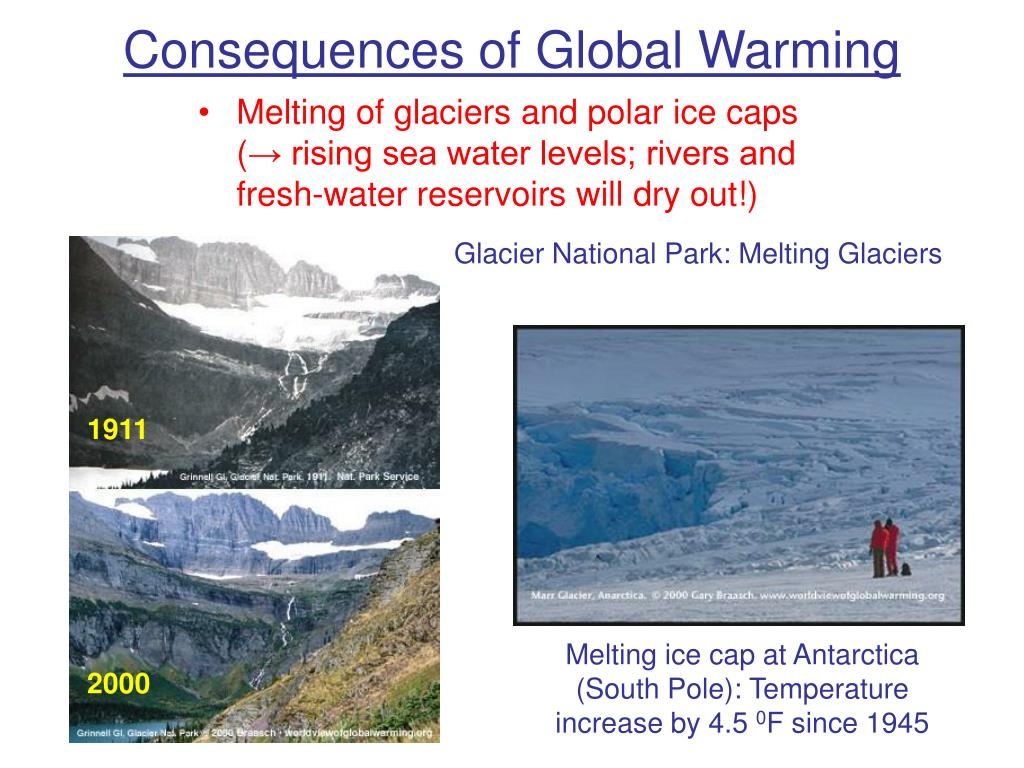 are the consequences of global warming The effects of global warming on things that live in the ocean are massive we already talked about plankton, but what about other species coral reefs – home to.