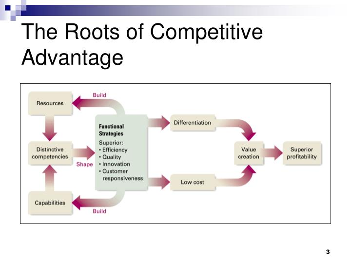 riordan's competitive advantages Search results for 'what competitive advantages does riordan have and which competitive strategies should riordan utilize to improve innovation and sustainability in both domestic and international applications.