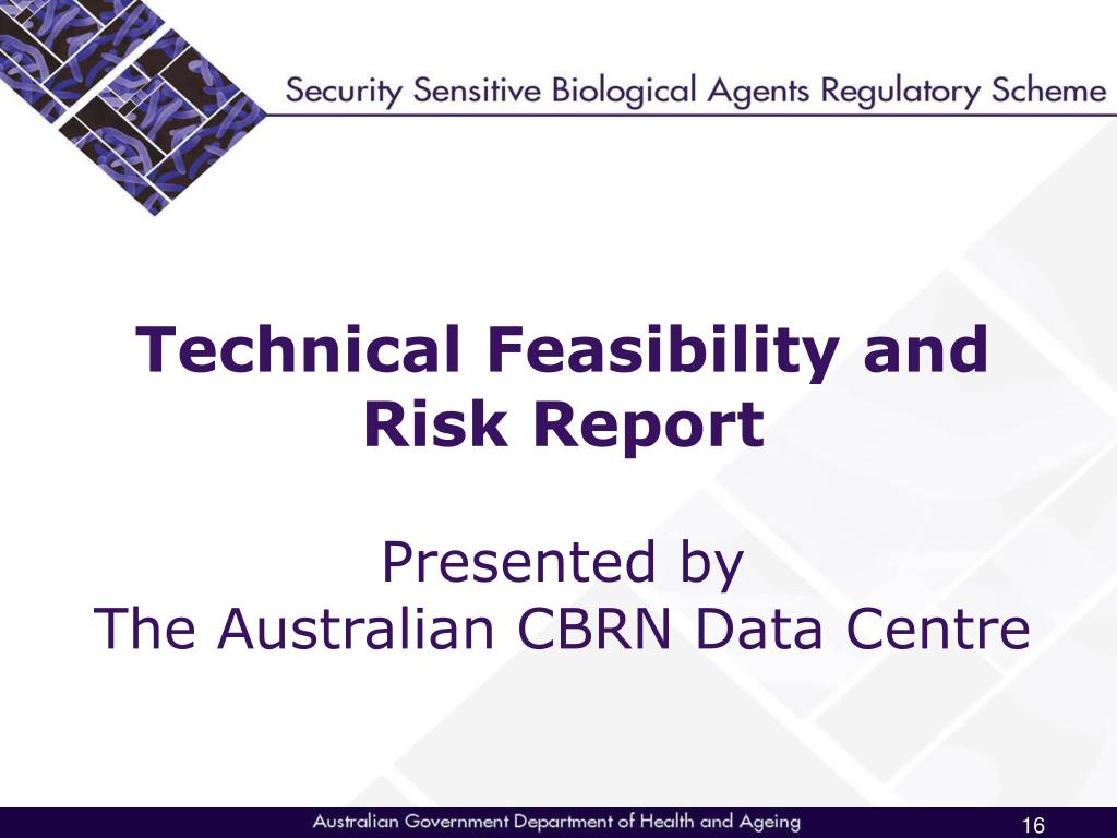 Technical Feasibility and Risk Report