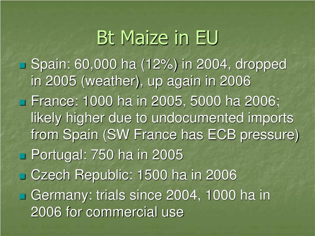 Bt Maize in EU