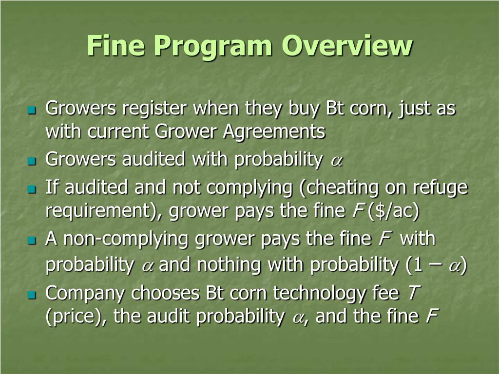Fine Program