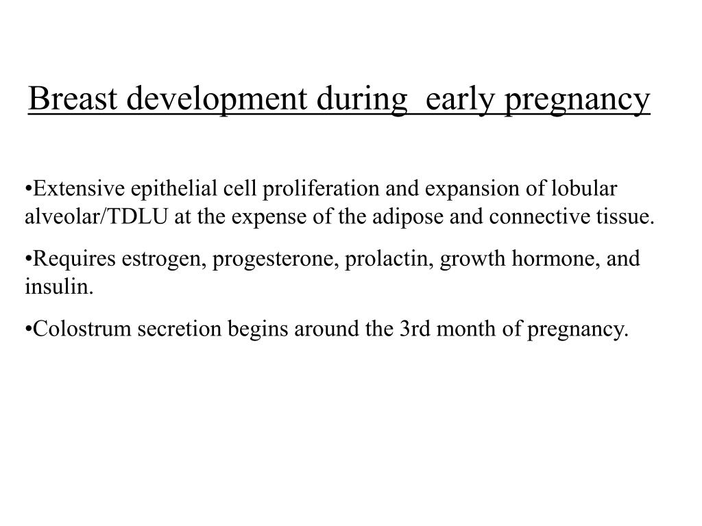 Breast development during  early pregnancy