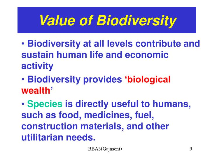 intrinsic values of biodiversity The economic and intrinsic values of parks describe the value of parks on a personal level in order to develop an accurate and •wildlife/biodiversity offsets.