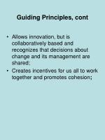 guiding principles cont
