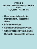 phase 3 improved services and systems of care july 1 2011 june 30 2012