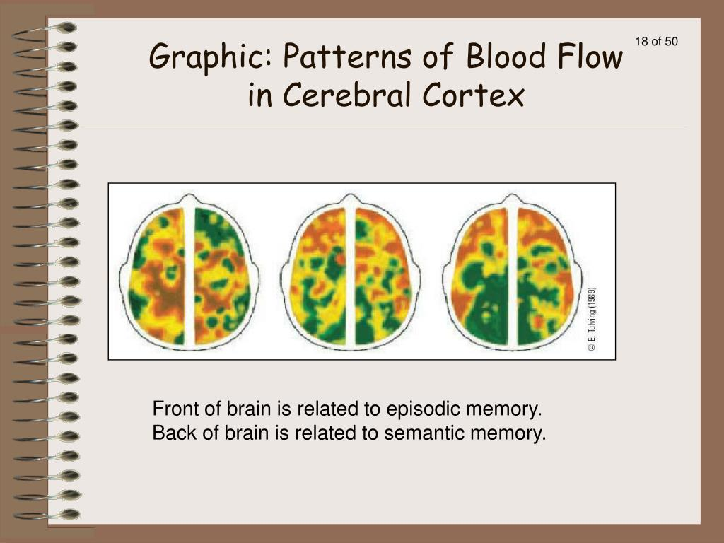 Front of brain is related to episodic memory.  Back of brain is related to semantic memory.