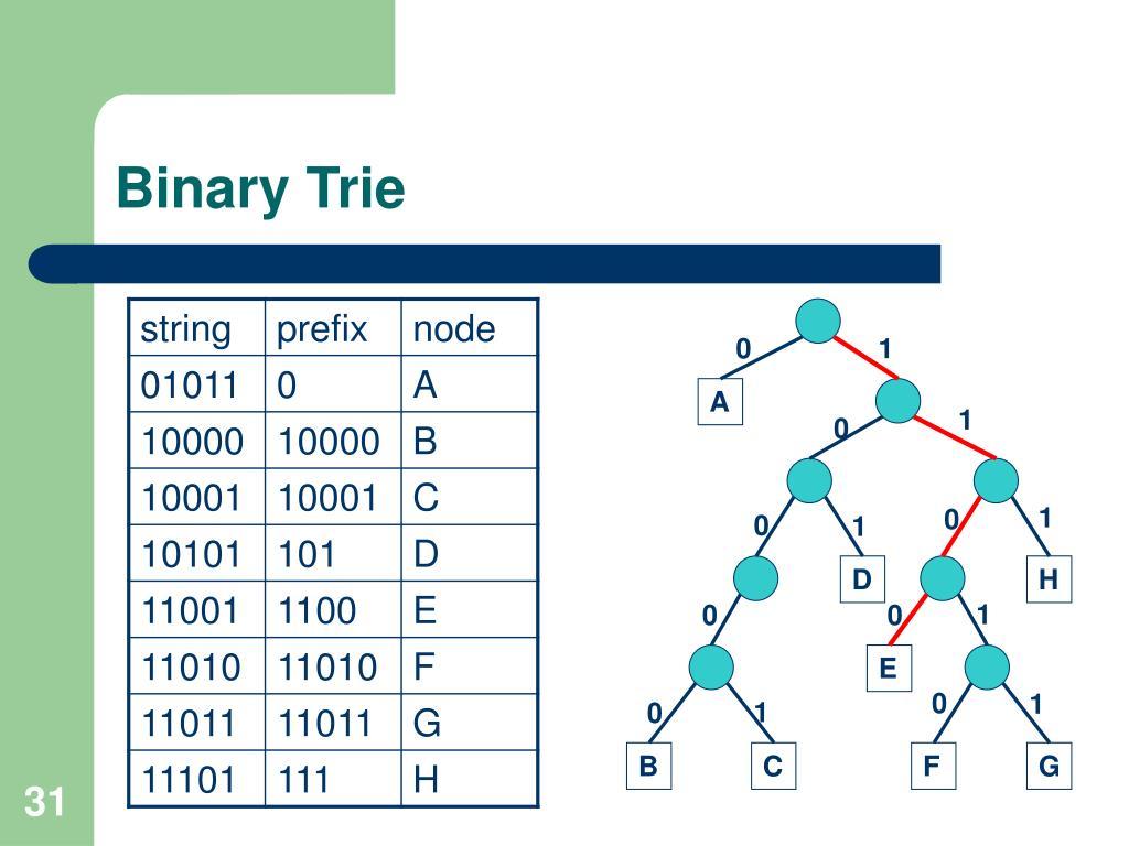 Binary Trie
