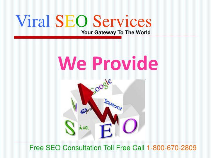 Viral s e o services2
