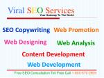 viral s e o services5