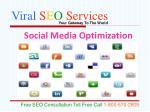viral s e o services9