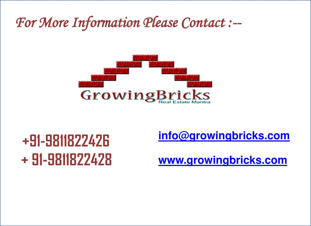 For More Information Please Contact :--